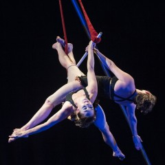 Circus Arts: Planning to soar